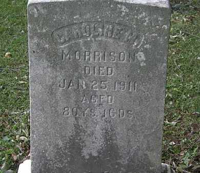 MORRISON, CAROLINE M. - Lorain County, Ohio | CAROLINE M. MORRISON - Ohio Gravestone Photos
