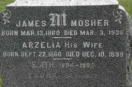 MOSHER, ARZELIA - Lorain County, Ohio | ARZELIA MOSHER - Ohio Gravestone Photos