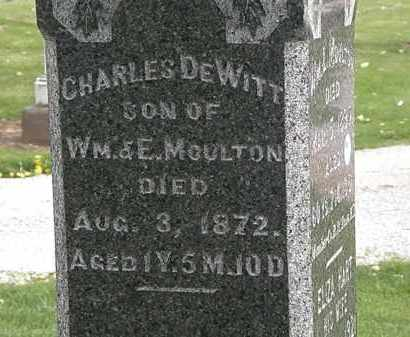MOULTON, E. - Lorain County, Ohio | E. MOULTON - Ohio Gravestone Photos