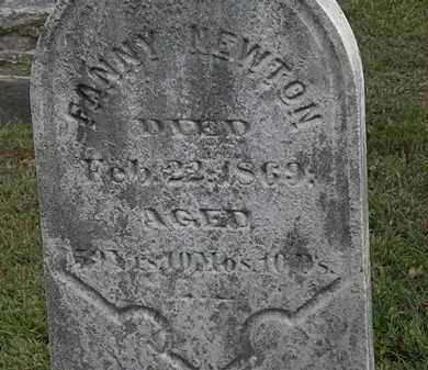 NEWTON, FANNY - Lorain County, Ohio | FANNY NEWTON - Ohio Gravestone Photos