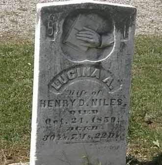 NILES, HENRY D. - Lorain County, Ohio | HENRY D. NILES - Ohio Gravestone Photos