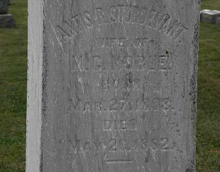 STURDEVANT NOBLE, ANTIS R. - Lorain County, Ohio | ANTIS R. STURDEVANT NOBLE - Ohio Gravestone Photos