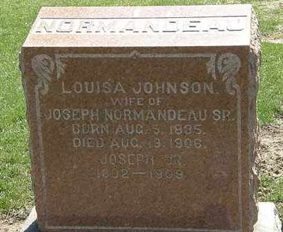 JOHNSON NORMANDEAU, LOUISA - Lorain County, Ohio | LOUISA JOHNSON NORMANDEAU - Ohio Gravestone Photos