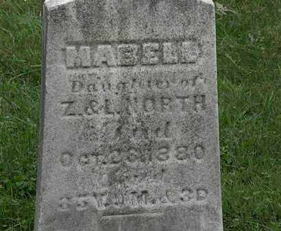 NORTH, MABELL - Lorain County, Ohio | MABELL NORTH - Ohio Gravestone Photos