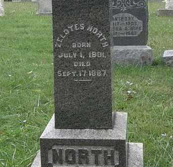 NORTH, ZELOTES - Lorain County, Ohio | ZELOTES NORTH - Ohio Gravestone Photos