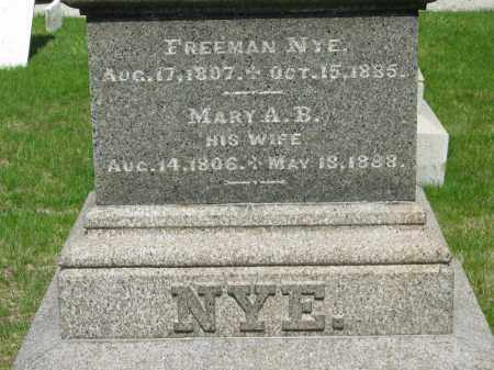 NYE, FREEMAN - Lorain County, Ohio | FREEMAN NYE - Ohio Gravestone Photos