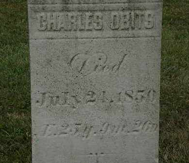 OBITS, CHARLES - Lorain County, Ohio | CHARLES OBITS - Ohio Gravestone Photos