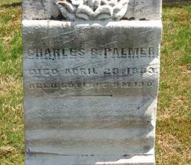 PALMER, CHARLES B. - Lorain County, Ohio | CHARLES B. PALMER - Ohio Gravestone Photos