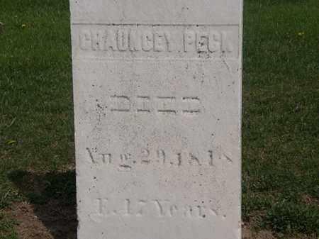 PECK, CHAUNCEY - Lorain County, Ohio | CHAUNCEY PECK - Ohio Gravestone Photos