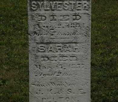 PELTON, SYLVESTER - Lorain County, Ohio | SYLVESTER PELTON - Ohio Gravestone Photos