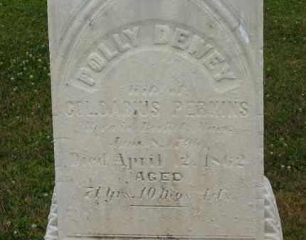 PERKINS, COL.  DARIUS - Lorain County, Ohio | COL.  DARIUS PERKINS - Ohio Gravestone Photos