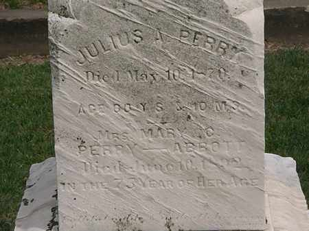 PERRY, JULIUS - Lorain County, Ohio | JULIUS PERRY - Ohio Gravestone Photos