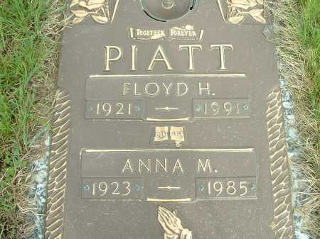 SADDLER PIATT, ANNA - Lorain County, Ohio | ANNA SADDLER PIATT - Ohio Gravestone Photos