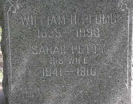 PETTY PLUMB, SARAH - Lorain County, Ohio | SARAH PETTY PLUMB - Ohio Gravestone Photos