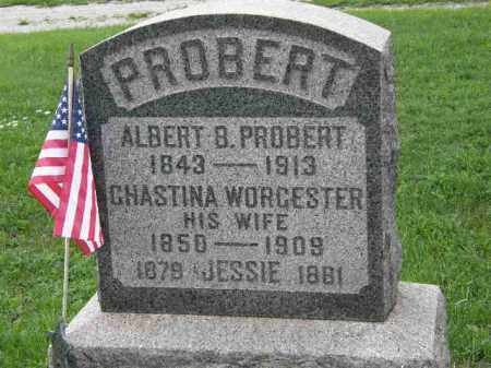WORCESTER PROBERT, CHASTINA - Lorain County, Ohio | CHASTINA WORCESTER PROBERT - Ohio Gravestone Photos