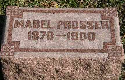 PROSSER, MABEL - Lorain County, Ohio | MABEL PROSSER - Ohio Gravestone Photos