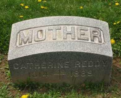 REDDY, CATHERINE - Lorain County, Ohio | CATHERINE REDDY - Ohio Gravestone Photos
