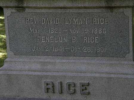 RICE, DAVID  LYMAN - Lorain County, Ohio | DAVID  LYMAN RICE - Ohio Gravestone Photos