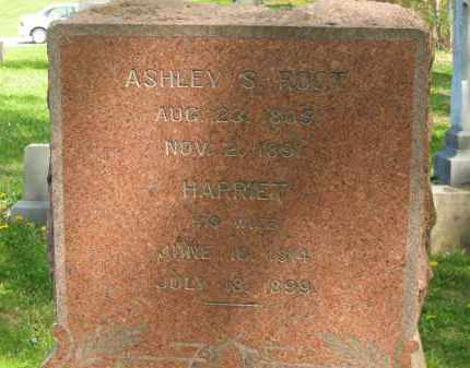 ROOT, ASHLEY S. - Lorain County, Ohio | ASHLEY S. ROOT - Ohio Gravestone Photos
