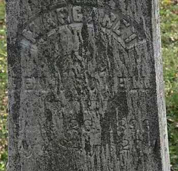 ROWELL, MARGARET - Lorain County, Ohio | MARGARET ROWELL - Ohio Gravestone Photos