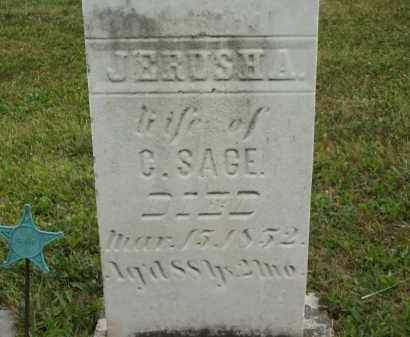 SAGE, JERUSHA - Lorain County, Ohio | JERUSHA SAGE - Ohio Gravestone Photos