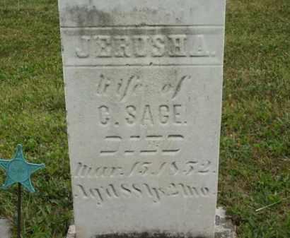 SAGE, C. - Lorain County, Ohio | C. SAGE - Ohio Gravestone Photos