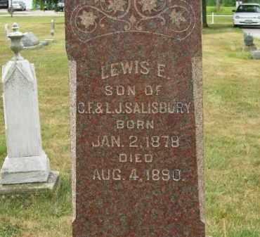 SALISBURY, L.J. - Lorain County, Ohio | L.J. SALISBURY - Ohio Gravestone Photos