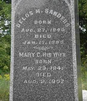 SANDERSON, DELOS M. - Lorain County, Ohio | DELOS M. SANDERSON - Ohio Gravestone Photos