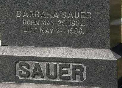 SAUER, BARBARA - Lorain County, Ohio | BARBARA SAUER - Ohio Gravestone Photos