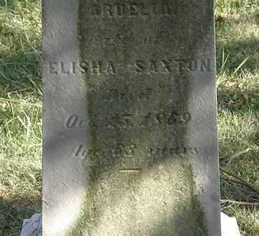 SAXTON, ARDELIA - Lorain County, Ohio | ARDELIA SAXTON - Ohio Gravestone Photos