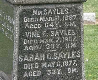 SAYLES, WM. - Lorain County, Ohio | WM. SAYLES - Ohio Gravestone Photos