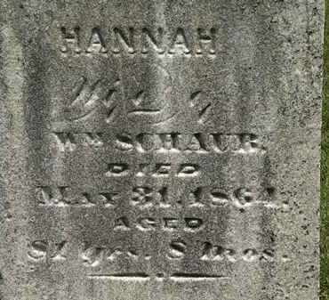 SCHAUB, HANNAH - Lorain County, Ohio | HANNAH SCHAUB - Ohio Gravestone Photos