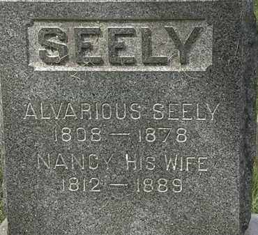 SEELY, ALVARIOUS - Lorain County, Ohio | ALVARIOUS SEELY - Ohio Gravestone Photos