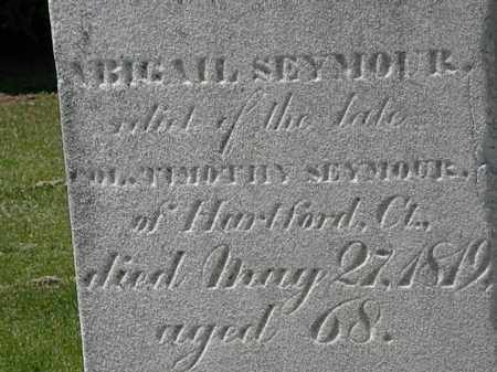 SEYMOUR, ABIGAIL - Lorain County, Ohio | ABIGAIL SEYMOUR - Ohio Gravestone Photos