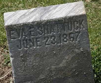 SHATTUCK, EVA E. - Lorain County, Ohio | EVA E. SHATTUCK - Ohio Gravestone Photos