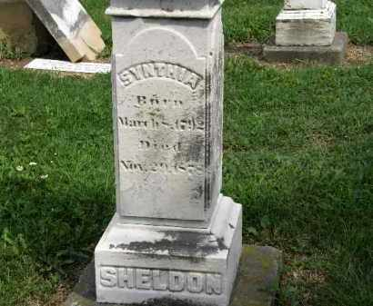 SHELDON, SYNTHIA - Lorain County, Ohio | SYNTHIA SHELDON - Ohio Gravestone Photos