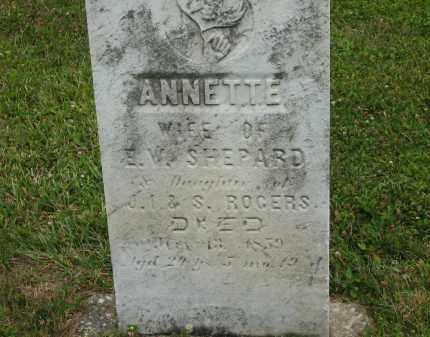 ROGERS SHEPARD, ANNETTE - Lorain County, Ohio | ANNETTE ROGERS SHEPARD - Ohio Gravestone Photos