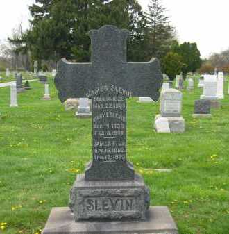 SLEVIN, JAMES - Lorain County, Ohio | JAMES SLEVIN - Ohio Gravestone Photos