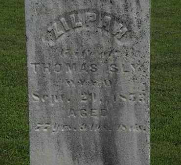 SLY, ZILPAW - Lorain County, Ohio | ZILPAW SLY - Ohio Gravestone Photos