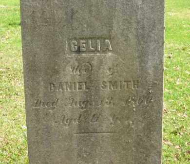 SMITH, CELIA - Lorain County, Ohio | CELIA SMITH - Ohio Gravestone Photos