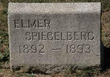 SPIEGELBERG, ELMER - Lorain County, Ohio | ELMER SPIEGELBERG - Ohio Gravestone Photos