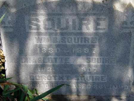 SQUIRE, CHARLOTTE - Lorain County, Ohio | CHARLOTTE SQUIRE - Ohio Gravestone Photos