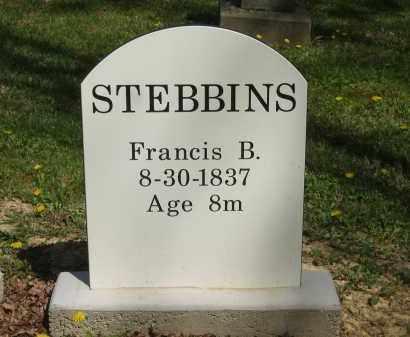 STEBBINS, FRANCIS B. - Lorain County, Ohio | FRANCIS B. STEBBINS - Ohio Gravestone Photos
