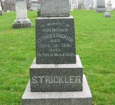 STRICKLER, ESTHER - Lorain County, Ohio | ESTHER STRICKLER - Ohio Gravestone Photos