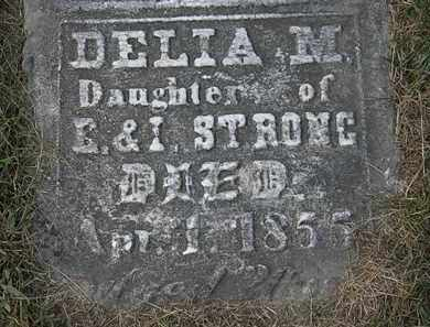 STRONG, DELIA M. - Lorain County, Ohio | DELIA M. STRONG - Ohio Gravestone Photos
