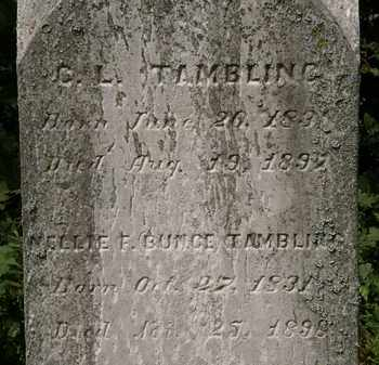 BUNCE TAMBLING, NELLIE F. - Lorain County, Ohio | NELLIE F. BUNCE TAMBLING - Ohio Gravestone Photos