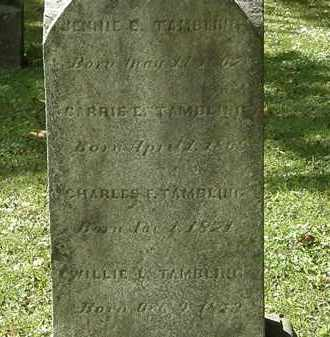 TAMBLING, CARRIE E. - Lorain County, Ohio | CARRIE E. TAMBLING - Ohio Gravestone Photos