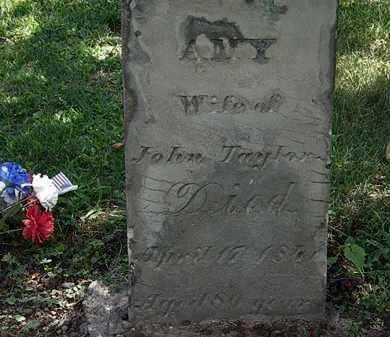 TAYLOR, JOHN - Lorain County, Ohio | JOHN TAYLOR - Ohio Gravestone Photos