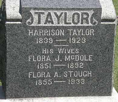 TAYLOR, HARRISON - Lorain County, Ohio | HARRISON TAYLOR - Ohio Gravestone Photos