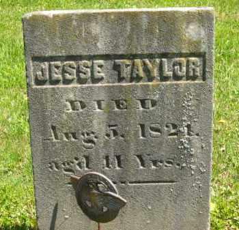 TAYLOR, JESSE - Lorain County, Ohio | JESSE TAYLOR - Ohio Gravestone Photos